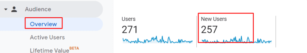 How Can You Access the New Users Report in Google Analytics