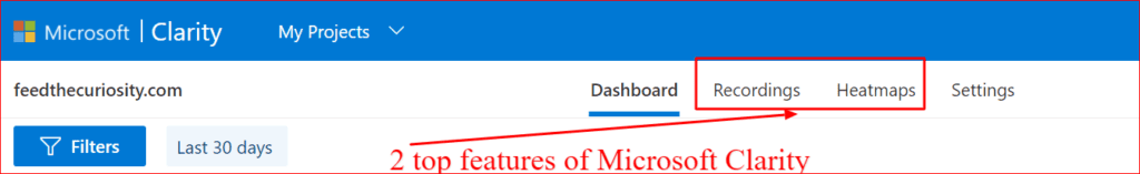 Microsoft clarity features